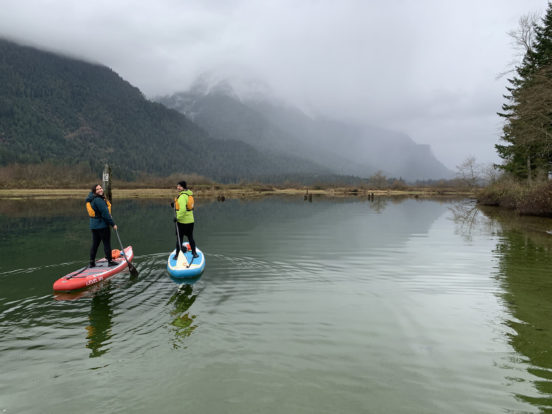 Two people paddling in a stand-up paddleboard on Widgeon Creek, BC.